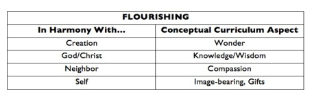 Curriculum flourishing connections copy